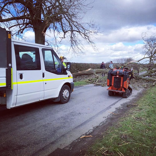 AJB Tree Care - Emergency Work