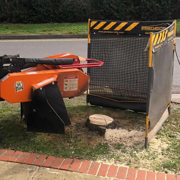 AJB Tree Care - Stump Grinding